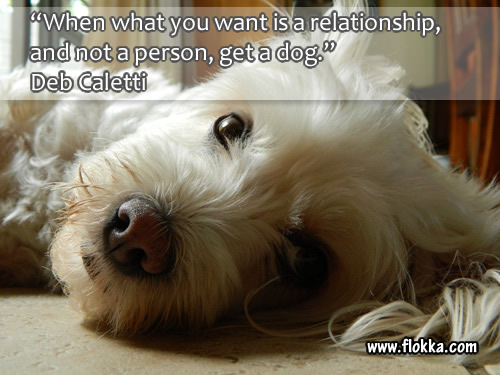 40 Quotes About Dogs